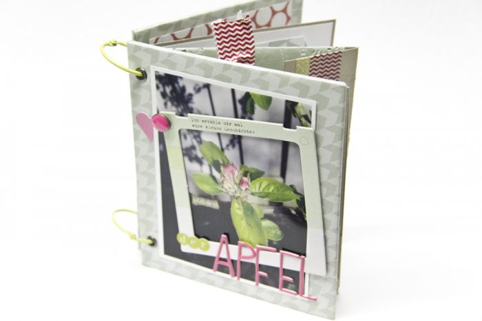 Minibook Pink Paislee