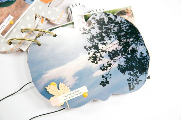 Herbstspaziergang Album