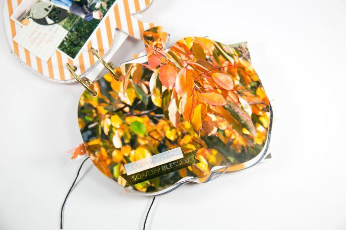 Pumpkin Cutfile
