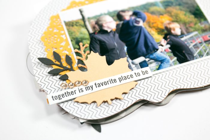 family mini album