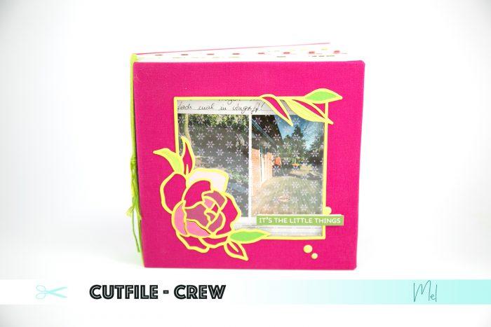Minialbum pink