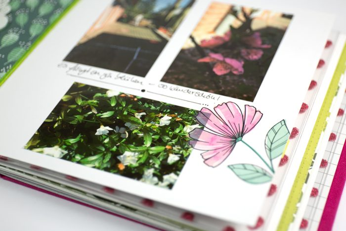 Minialbum Frühling